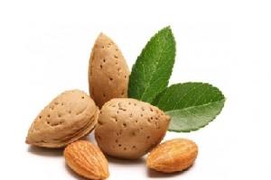 (کیلوگرم)بادام سنگی